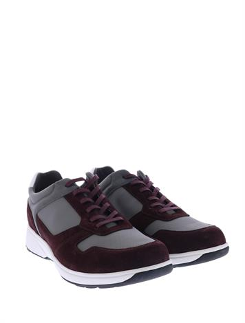 Xsensible 30401.1 Wine Grey H-Wijdte